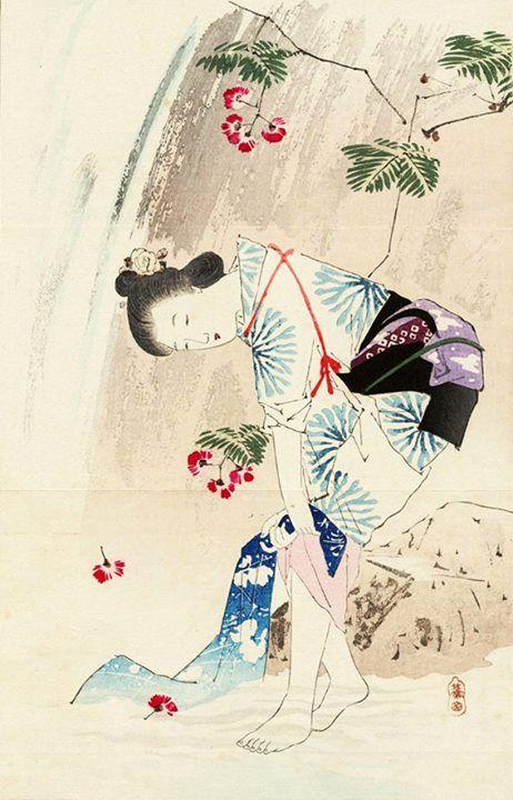 瀧しぶき (1905) 三島蕉窓   日本画, 花, しぶき