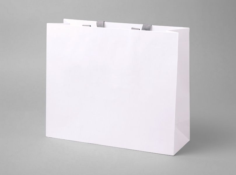 Shopping Bag | Mock up - blank packaging - templates | Pinterest ...