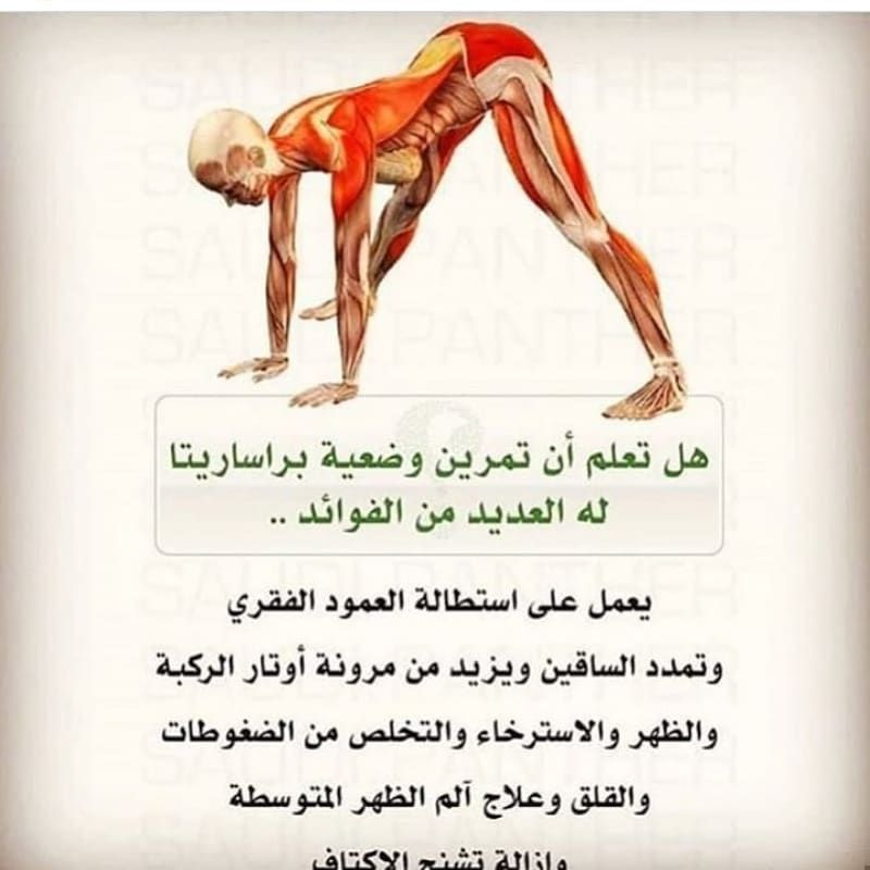 Pin By Bayan On Http Nafies Com Health Facts Fitness Gym Workout For Beginners Gym Workout Tips