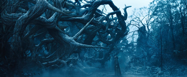Wall Of Thorns Google Search In 2019 Maleficent