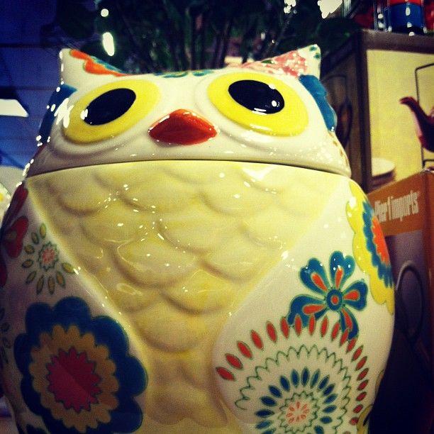 Pier 1 Owl Cookie Jar also good for dog treats | Home Ideas | Pinterest