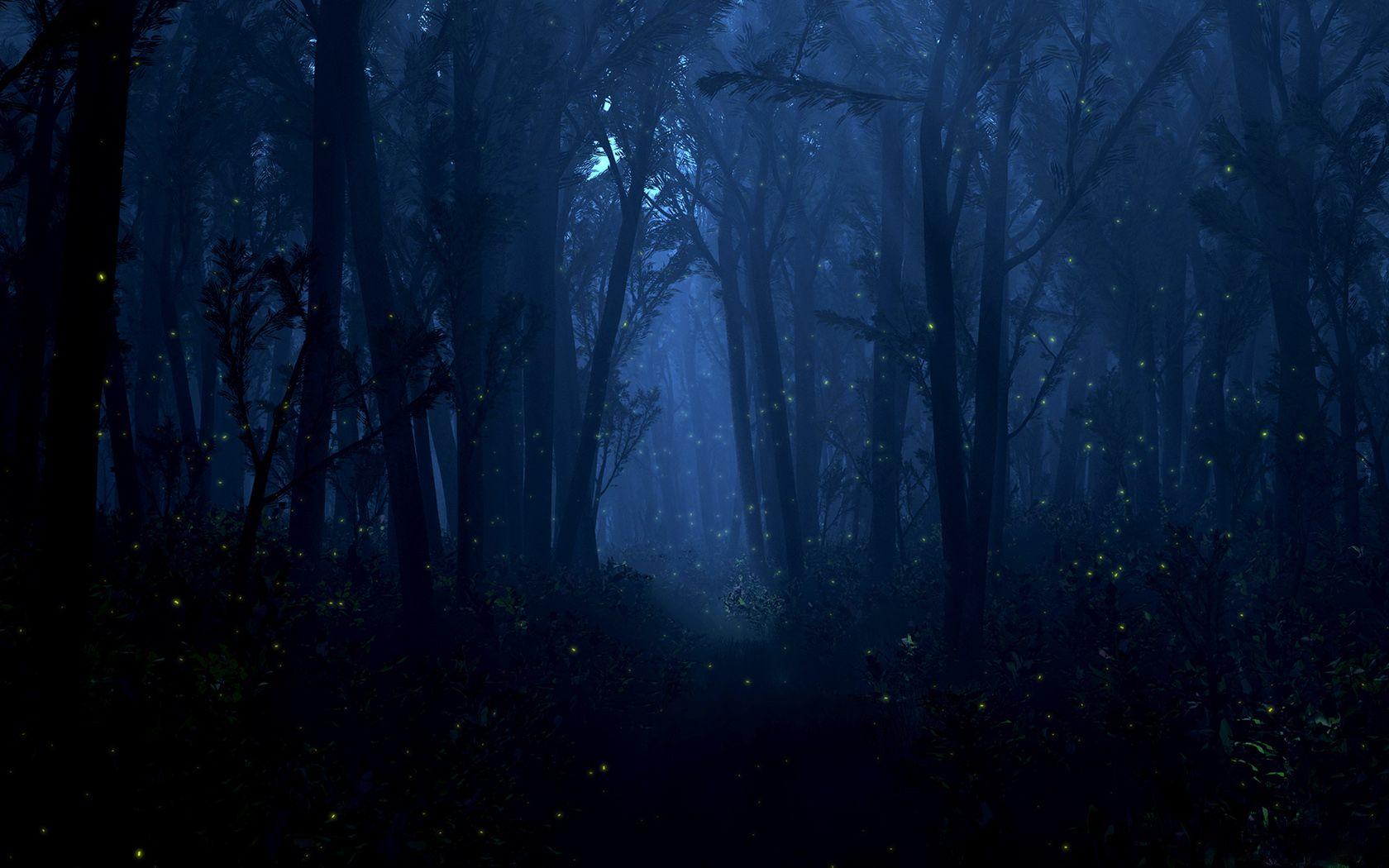 Popular Wallpaper Night Forest - 807a6a0322e391637e4c1cfd5cbfe8b3  Snapshot-17032.jpg