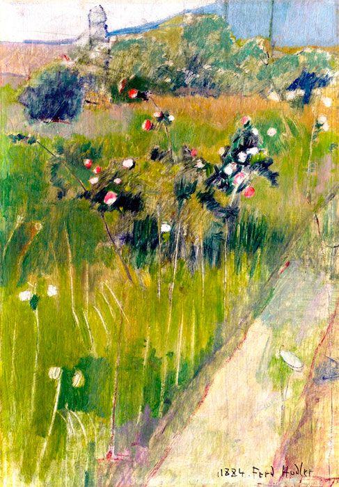 Rosebush in a Meadow  -   Ferdinand Hodler - 1884