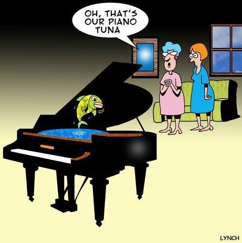 From The Student Music Organizer With Images Piano Funny