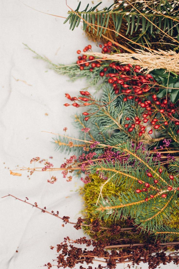 Foraged Winter Wreath Making | PITH + VIGOR #wintergardening