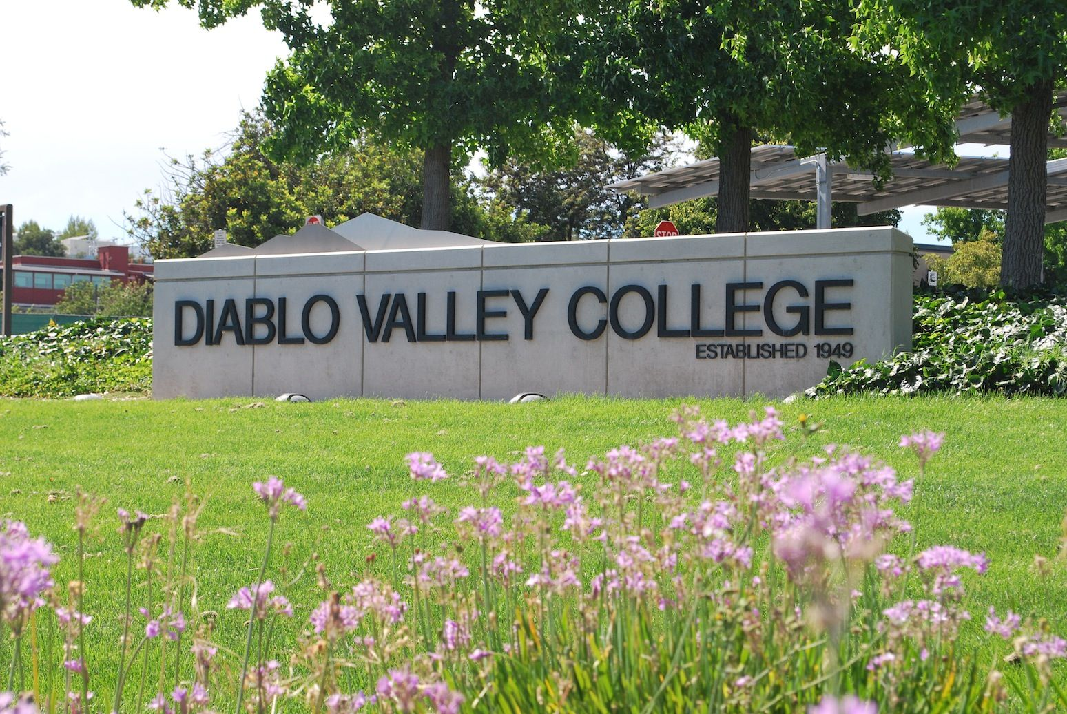 Image result for diablo valley college