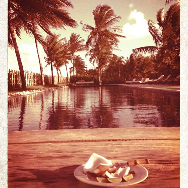 .@Laura Wanefalea (Beyoncé) 's Instagram photos | Webstagram - the best Instagram viewer