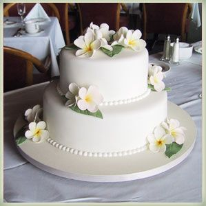 Simple 2 Tier White Wedding Cake Maybe A Bit Too