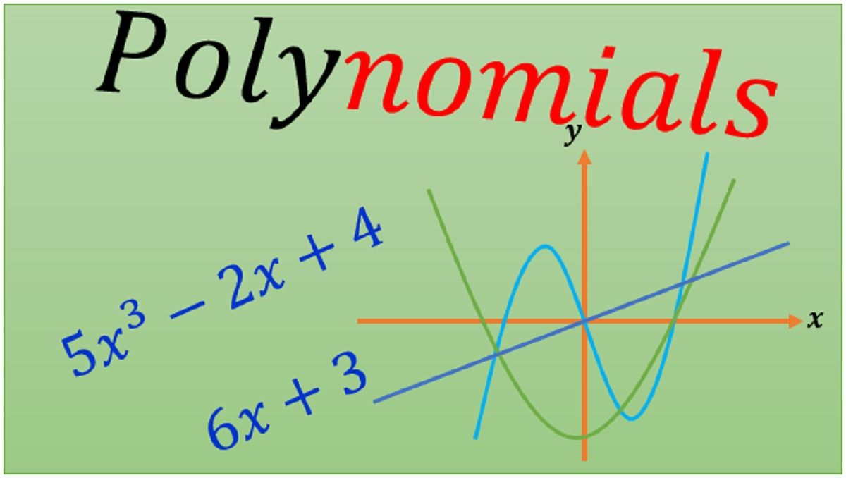 Free polynomials quiz in 2020 polynomials quiz