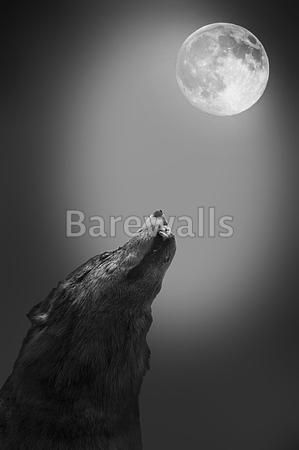 Wolf Howls To The Moon  Halloween Art Prints Available At