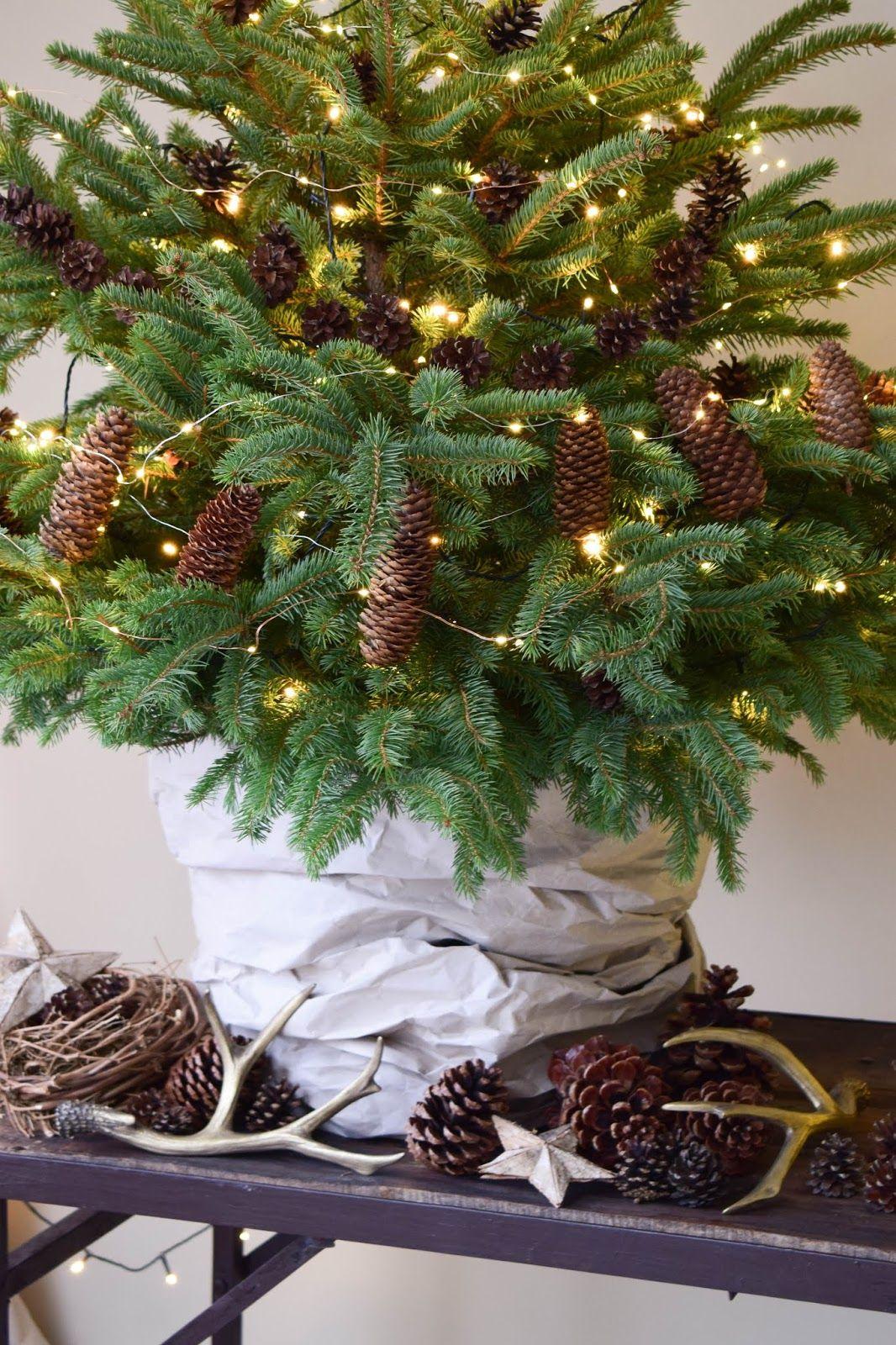 weihnachtsbaum dekorieren weihnachtsbaumschmuck basteln. Black Bedroom Furniture Sets. Home Design Ideas