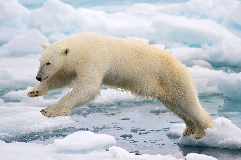 Tutkijaryhmä haluaa pysäyttää arktisen merijään sulamisen melkoisella suunnitelmalla, jossa 10 miljoonaa pumppua syytäisi vettä jään päälle.