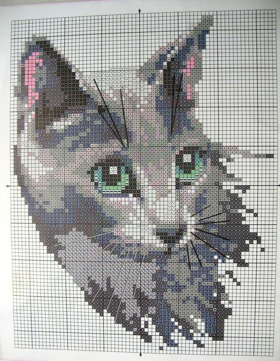 GRAFICOS PUNTO DE CRUZ GRATIS : GATOS -- GREY CAT -- PG 3 OF 3 ...