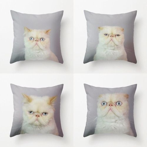➡️ LordAriesCat.com ➡️ STORE ➡️ SOCIETY6 - Worldwide shipping  #Society6 #pillows #mugs #totebags #cat #cats #phonecases #ipadcases #wallclocks (em LordAriesCat.com )
