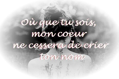Citation Damour Impossible Citation Amour Impossible