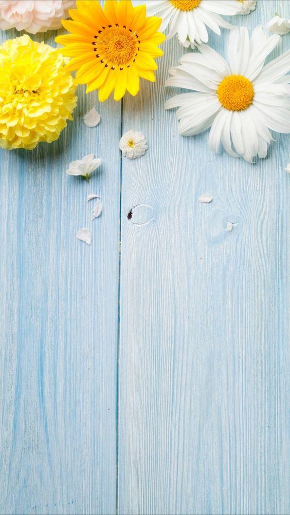 Photo of 49 besten Ideen über Floral Phone Wallpaper für Frauen und Mädchen – Seite 26 von 49 – Veguci