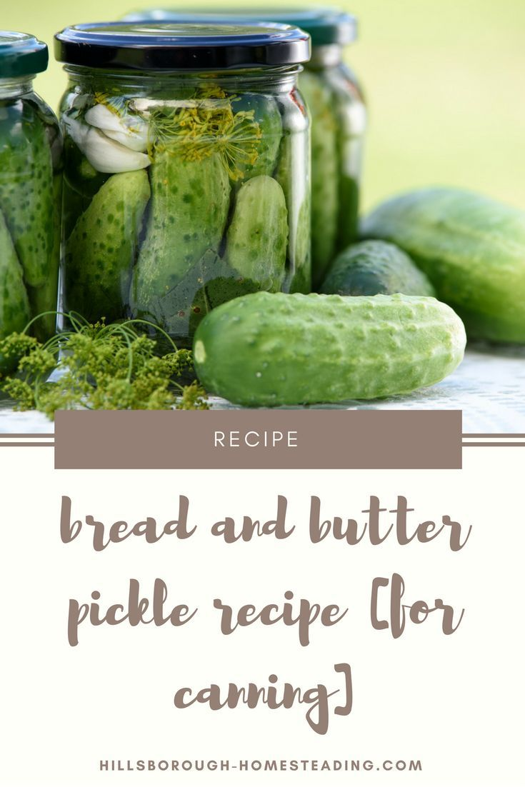 Easy Bread and Butter Pickles For Canning   Recipe ...