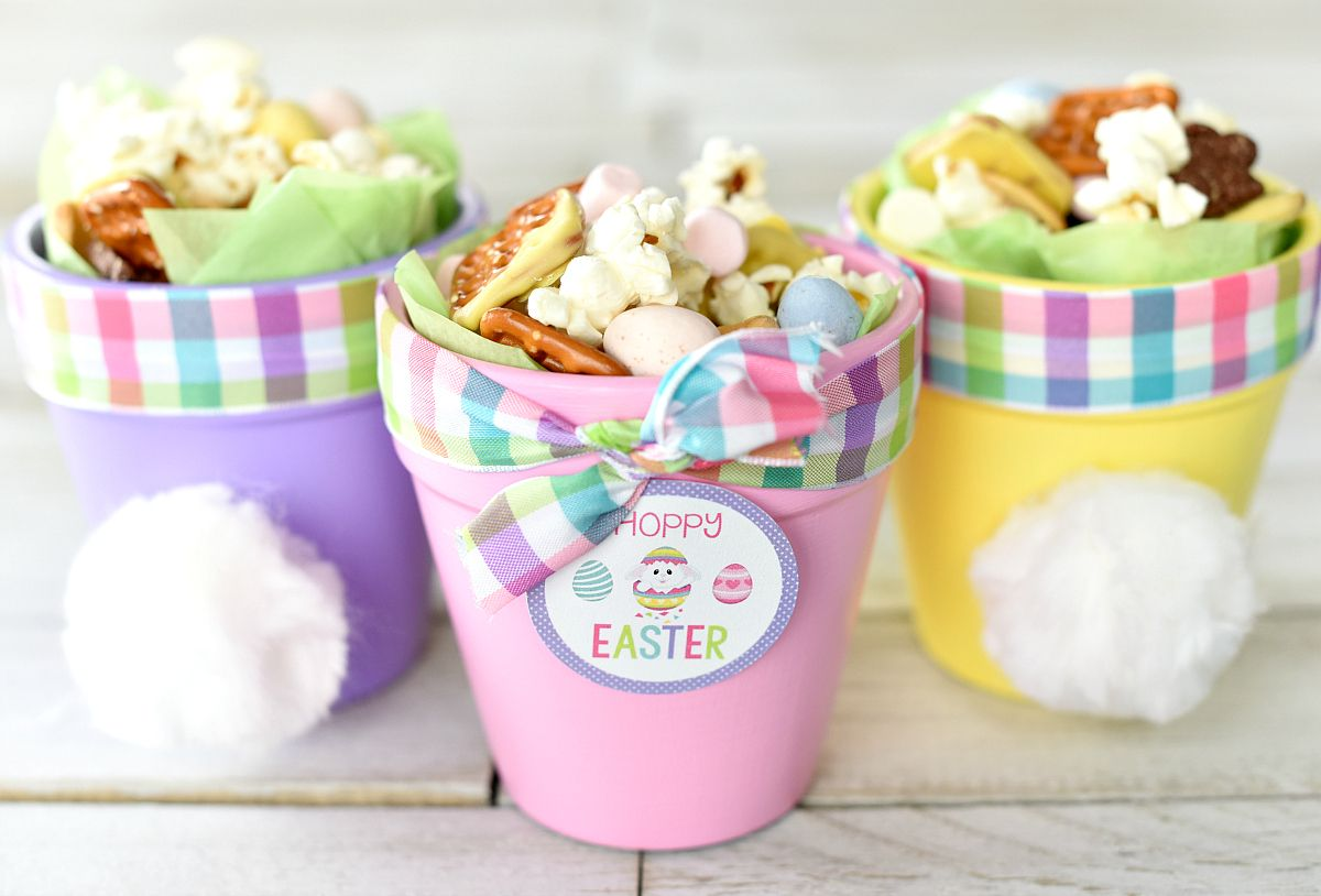Cute easter gift ideas hoppy easter bunny pots easter easter these cute little easter gift ideas are irresistible a little flower pot painted in pastel colors with a bunny pot and a cute easter gift tag negle Choice Image