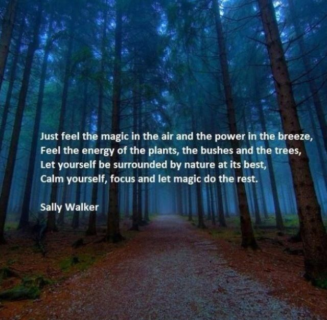 Best Nature Quotes: Magic In The Air, Power In The Breeze, Feel The Energy