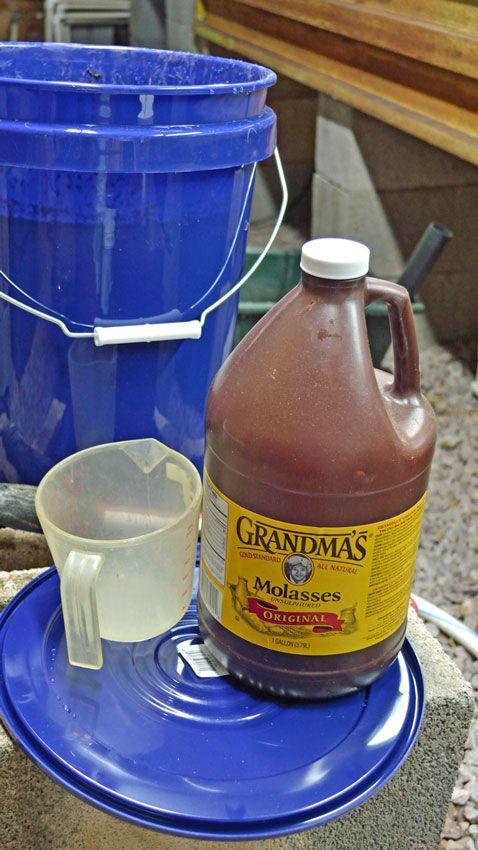 Best Homemade Fish Emulsion Compost Tea Fertilizer For 400 x 300