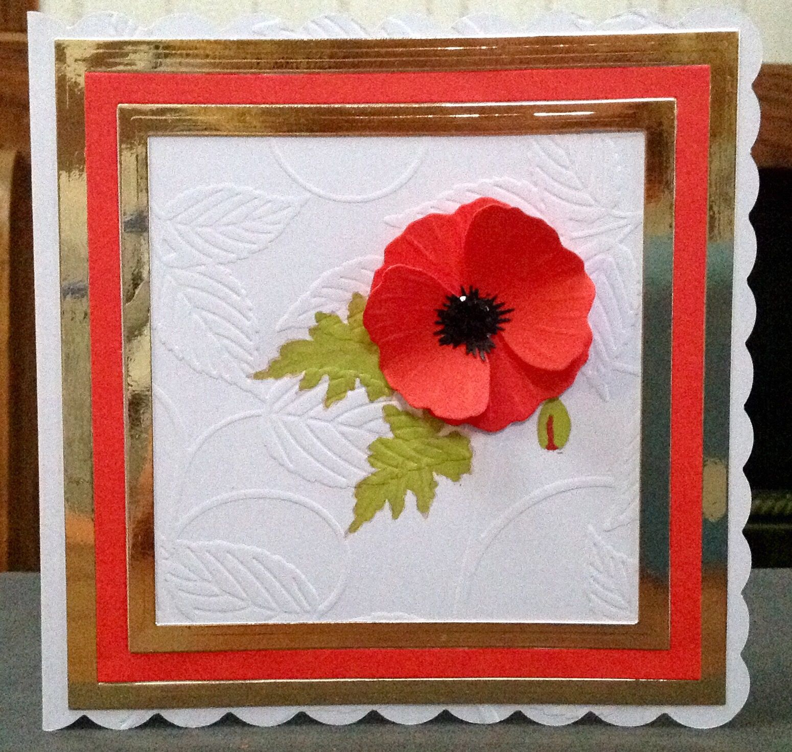 A poppy card for remembrance,the stamp was from Sheena stamps, with an embossed back ground .