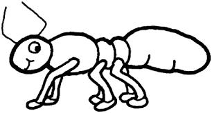Disegni Da Colorare Animali Formica.Risultati Immagini Per Disegni Di Formica Immagini Formiche