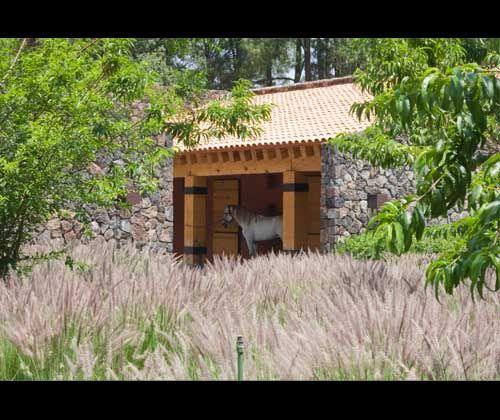 Mediterranean Ranch Style Homes: Mediterranean Style