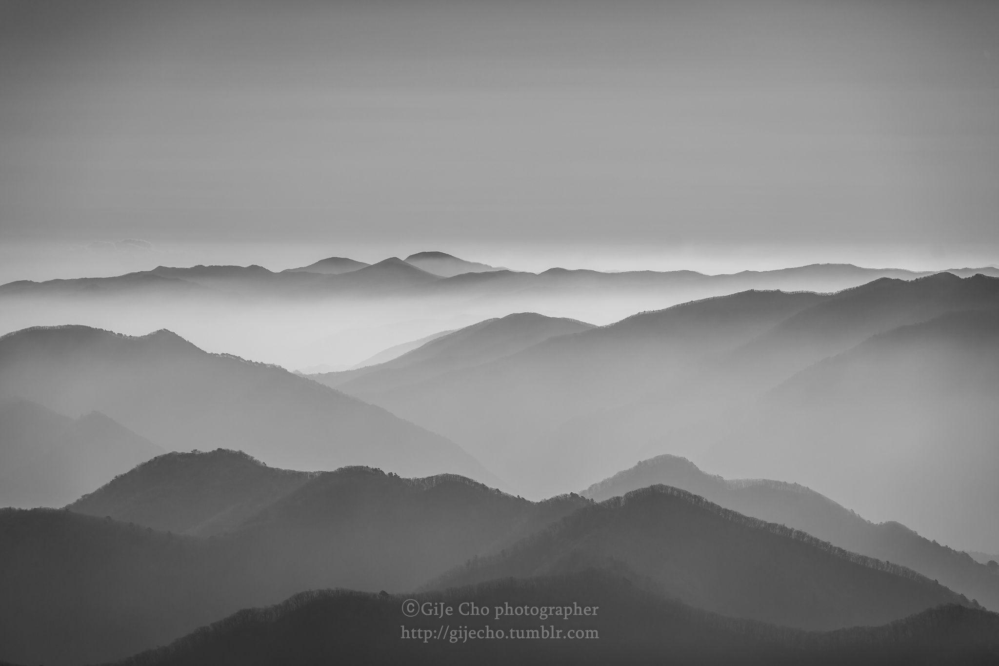 B/W fog by Gije Cho on 500px