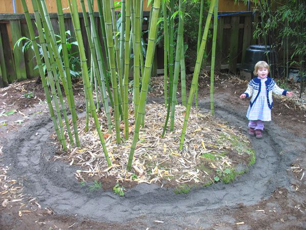 Japanese Bamboo Garden Design shishi odoshi japanese bamboo water feature Bamboo Sand Trap Iris Packing Down The Sand In The Rhizome Sand Trap Designed