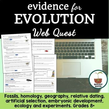 Relative dating evidence for evolution