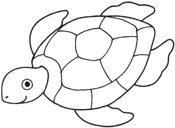 Free Printable Turtle Coloring Pages For Kids Turtle Coloring