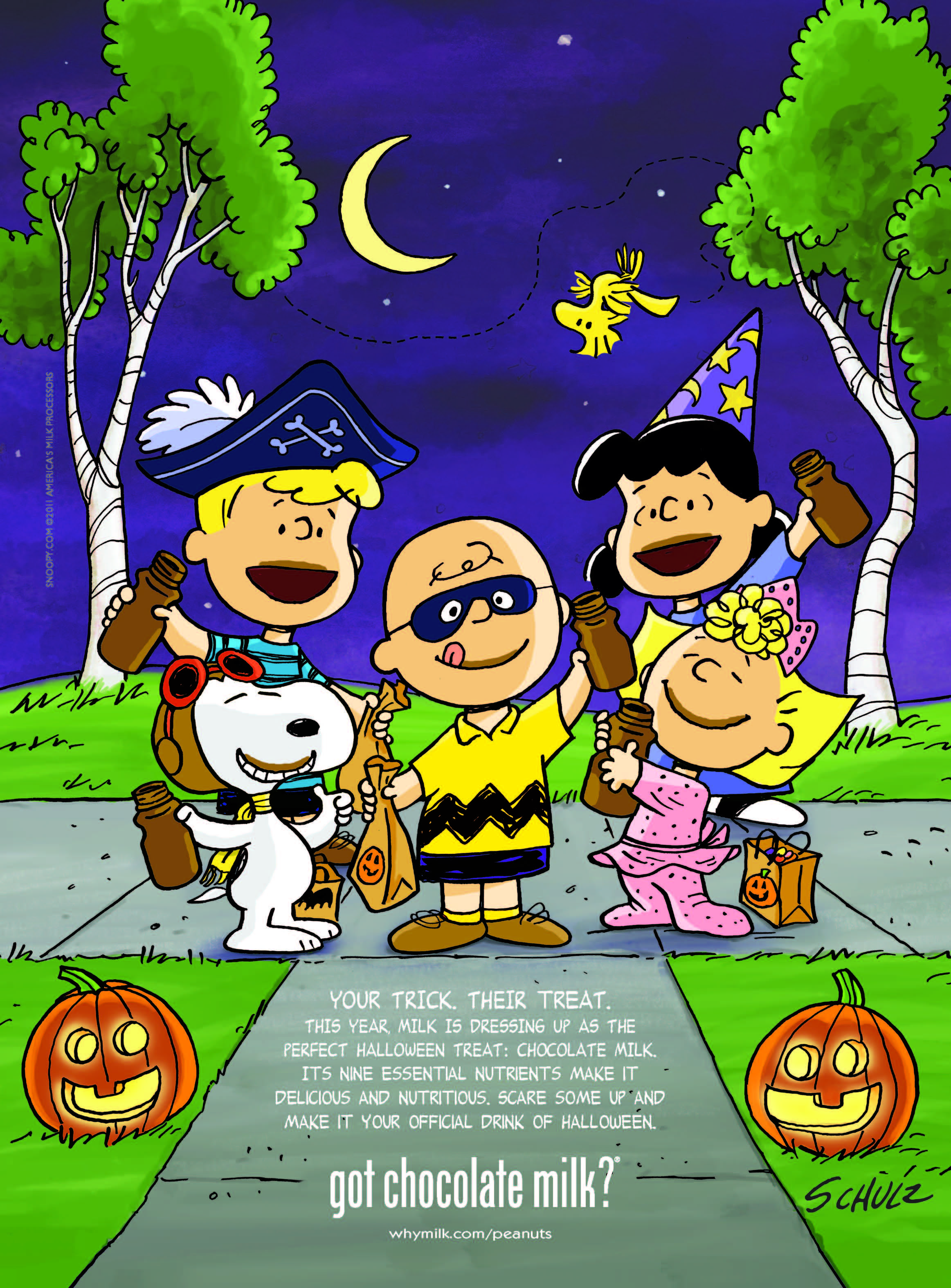 Snoopy, Charlie Brown, Sally, Lucy & Schroeder in Halloween ...