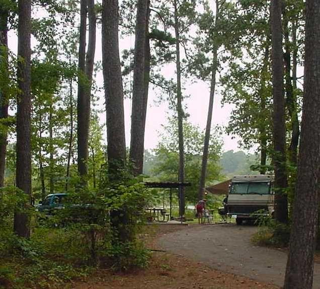 MillCreek Park (Sam Rayburn) | Park, Army corps of ...
