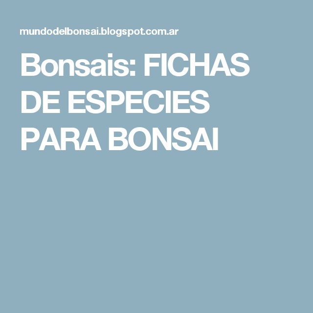 Bonsais: FICHAS DE ESPECIES PARA BONSAI