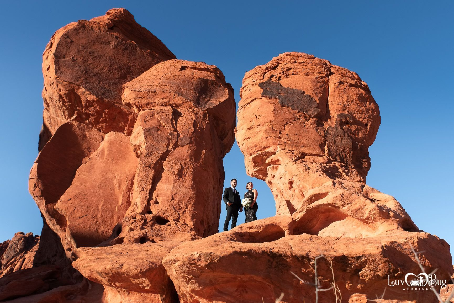 Congrats Mario and Veronica on your Valley of Fire wedding