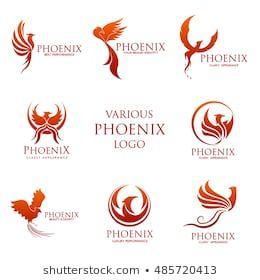 Phoenix Rising: vectores, imágenes y arte vectoria