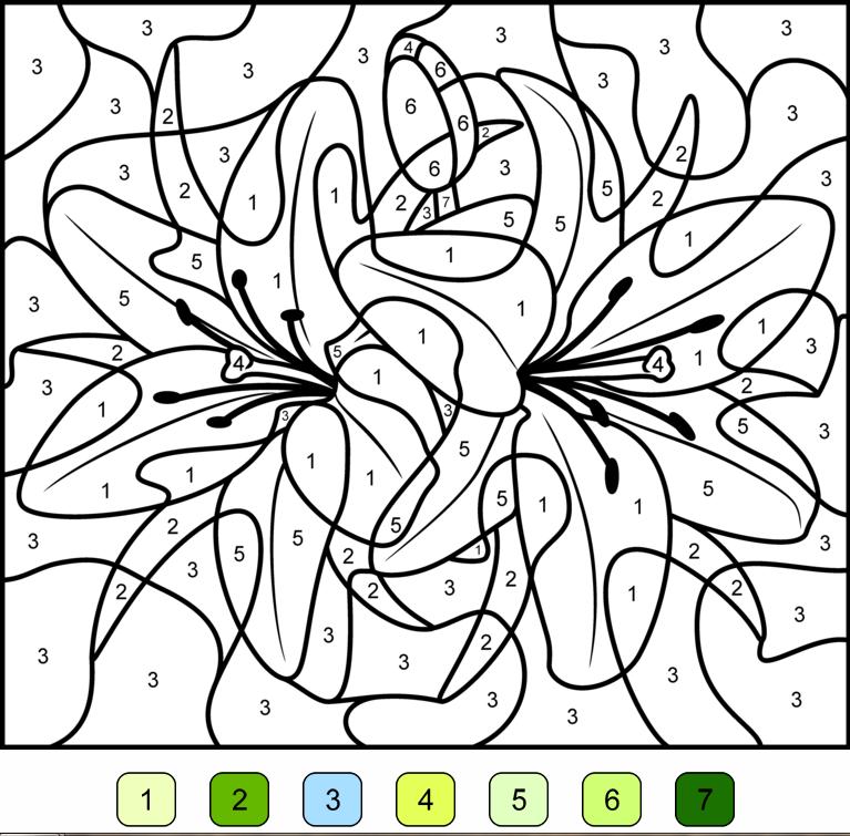 Dessin magique cycle 1 - Coloriages | G.C Disney | Pinterest