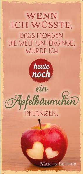 MLZ Wenn ich wüsste/Apfelbäumchen | Lebensweisheiten Zitate