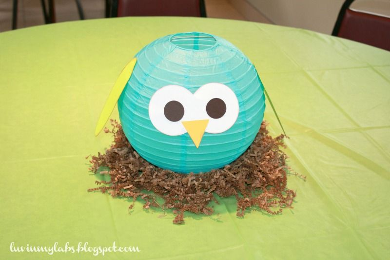 Owl Themed Birthday Party The Story Of Us My Nephew S 1st