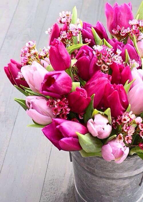 Tulips 郁金香 | Floral Decor & bouquets | Pinterest | Flowers ...
