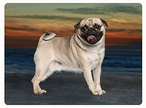 #Pug Tempered #CuttingBoard Doggie of the Day http://www.amazon.com/dp/B00514L0UY/ref=cm_sw_r_pi_dp_XLsmwb0N68221