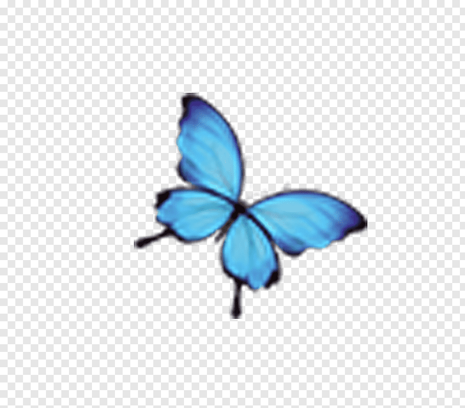 Google Image Result For Https W0 Pngwave Com Png 205 236 Monarch Butterfly Blue Insect Blue Butterfly Png Clip Art Monarch Butterfly Blue Butterfly Butterfly