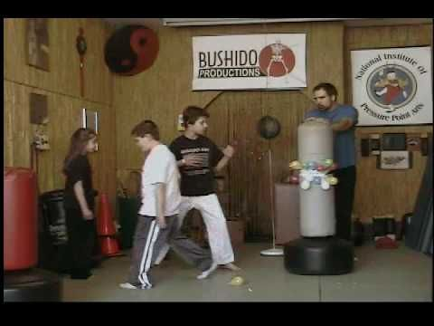 ▶ Kids Exercise & Martial Arts & Sports Game - Catch the Laser - YouTube