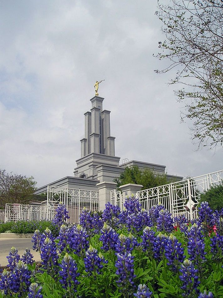san antonio texas temple with purple flowers wedding pinterest san antonio temple and texas. Black Bedroom Furniture Sets. Home Design Ideas
