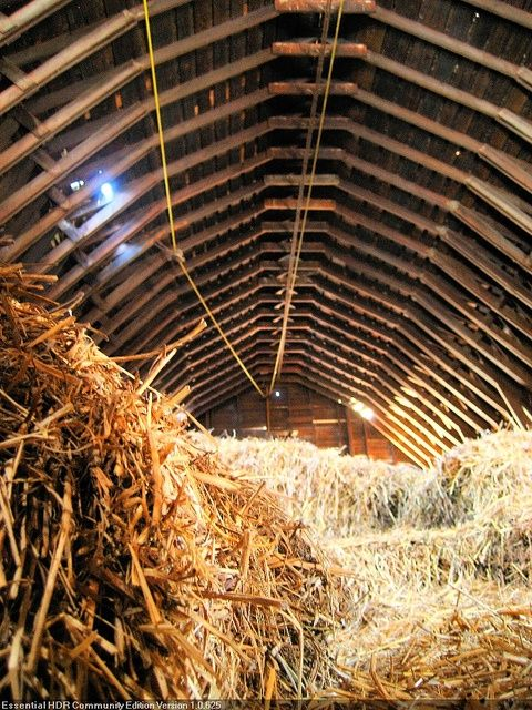 Playing In The Hay Loft As Kids Was The Most Fun A Kid