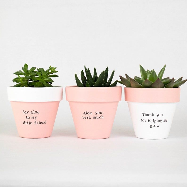 4 Set Of 3 Custom Planter Set Personalized Planter Etsy In 2020 Painted Plant Pots Herb Pots Custom Planters