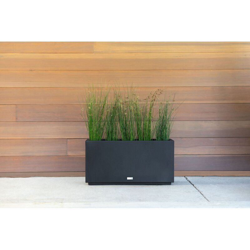 Metallic Series Galvanized Steel Planter Box & Reviews | Birch Lane