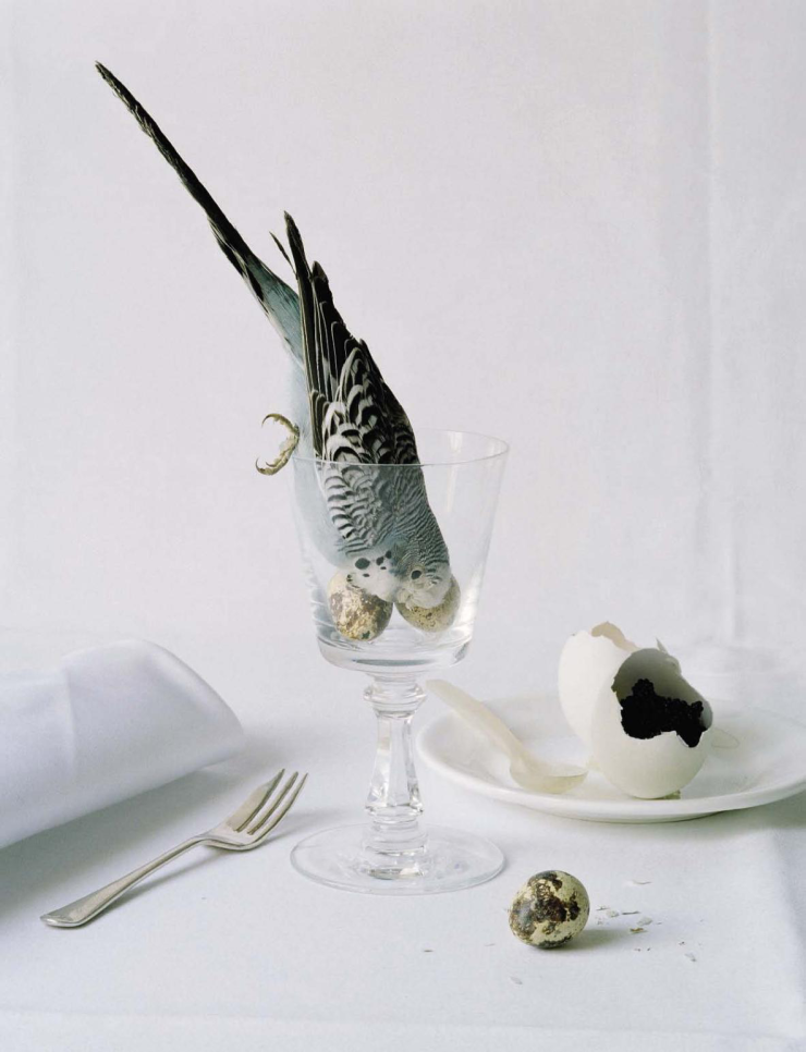 """""""Come to Dinner"""" by Tim Walker for Vogue Italia May 2015"""