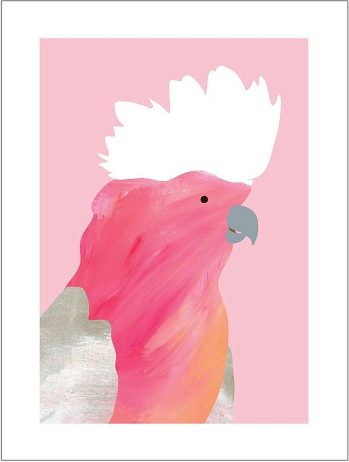 Prints To Frame Galah Print Art | Art: illustration | Pinterest ...