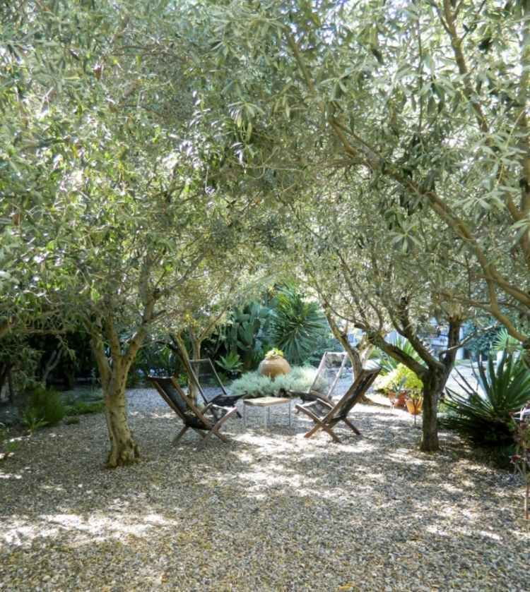 Plantes Et Am Nagement Jardin M Diterran En 79 Id Es Jardin M Diterran En Jardins En Bois